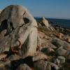Plezanje na Korziki